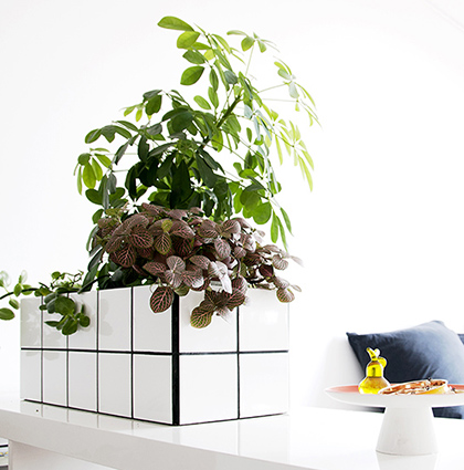 CASTORAMA : DIY PLANTS LOVERS ARE MAKERS