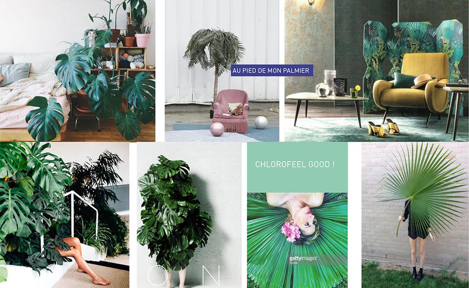 Stylisme déco DIY Jungle urbaine, magazine Marie Claire Idées