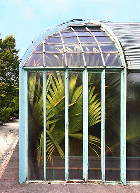 Mary-Etcetera- Styliste déco, photo, DIY sur Instagram - Plants lovers - Les Serres d'Auteuil